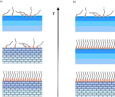 Schematic illustration of a) surface melting and b) surface freezing.