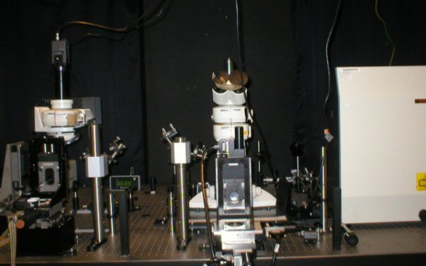 Photo of TIR Raman optical bench